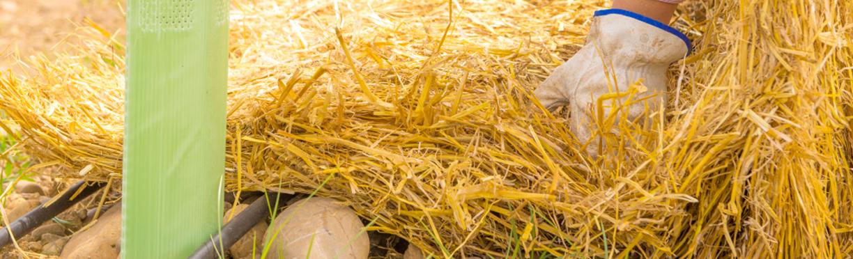 Nuestra AGRICULTURA: responsable con los recursos y las personas