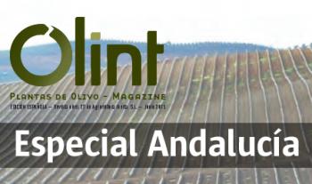 Cortijo el Puerto en la revista Olint