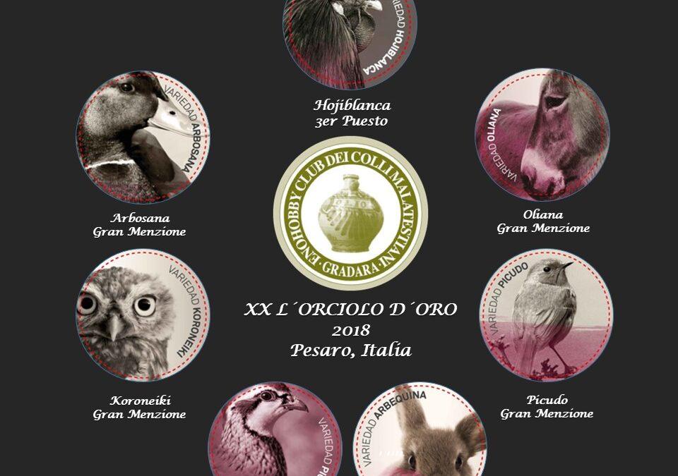 Siete galardones en el Concurso Internacional L´Orciolo de Oro celebrado en Italia