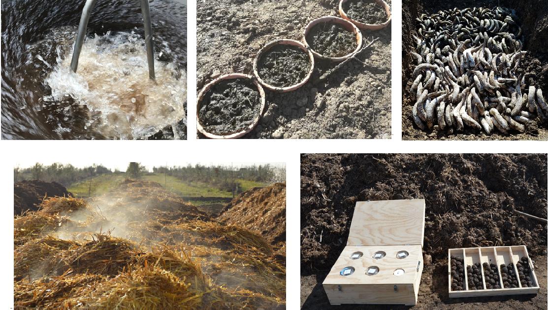 Compost & bidynamic preparations preparados biodinámicos cortijo el puerto 3