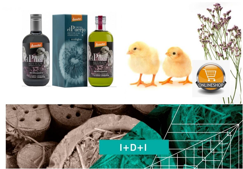 Chiquitita EN_head_organic biodynamic extra virgin olive oil evoo Cortijo el Puerto