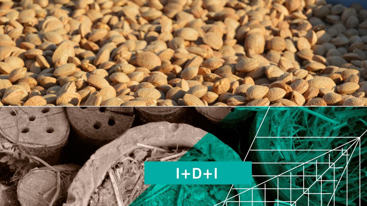 Cortijo el puerto_ Agricultura Ecologica y de Innovación Smart farming_2019.