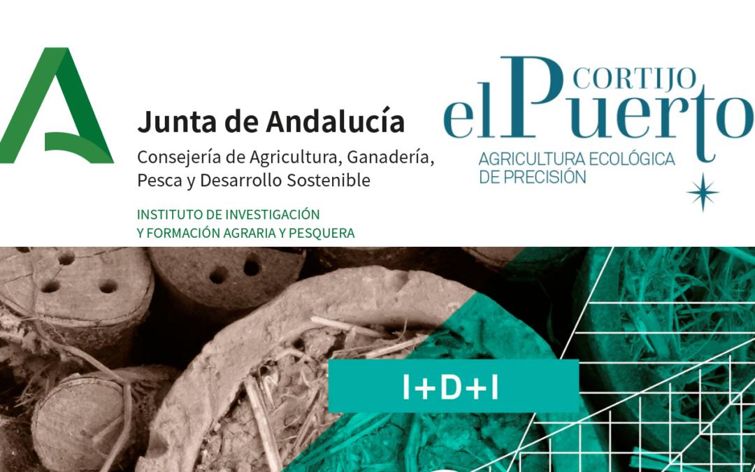 Cortijo el Puerto colabora con el IFAPA en la selección de nuevas variedades de olivo