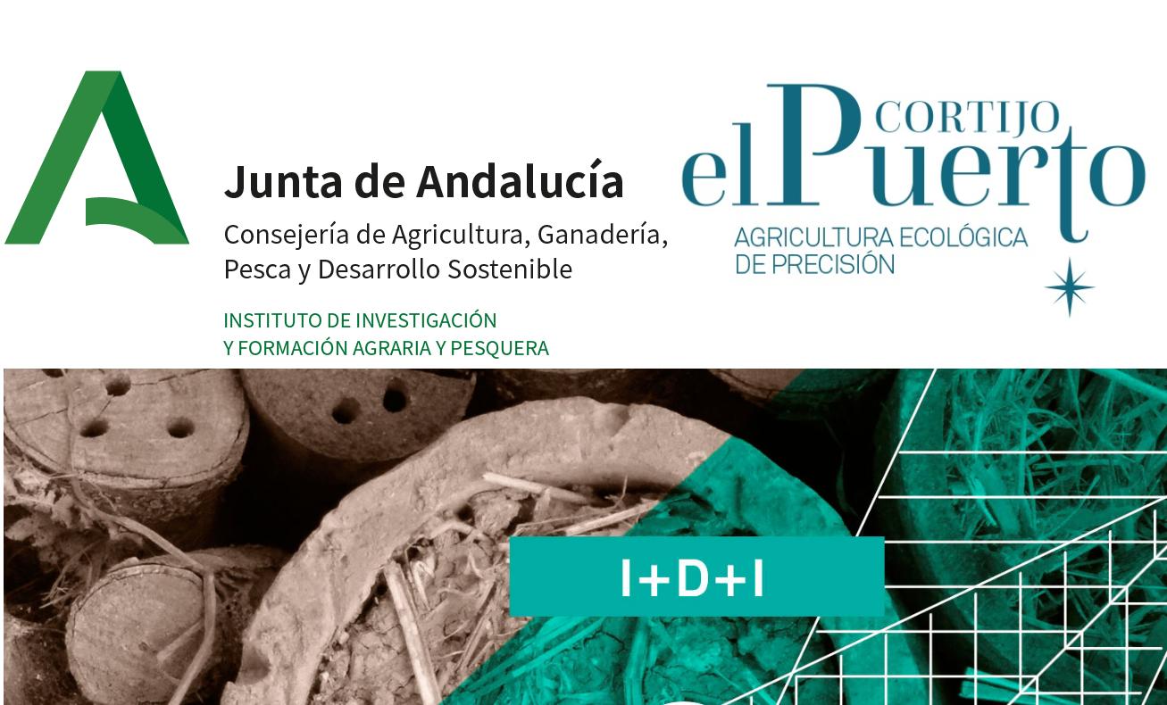 IFAPA _convenio Cortijo el Puerto ecológía e innovación_nuevas variedades olivo