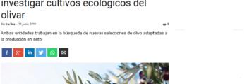 La Voz de Córdoba: Ifapa y Cortijo el Puerto se unen para investigar cultivos ecológicos del olivar