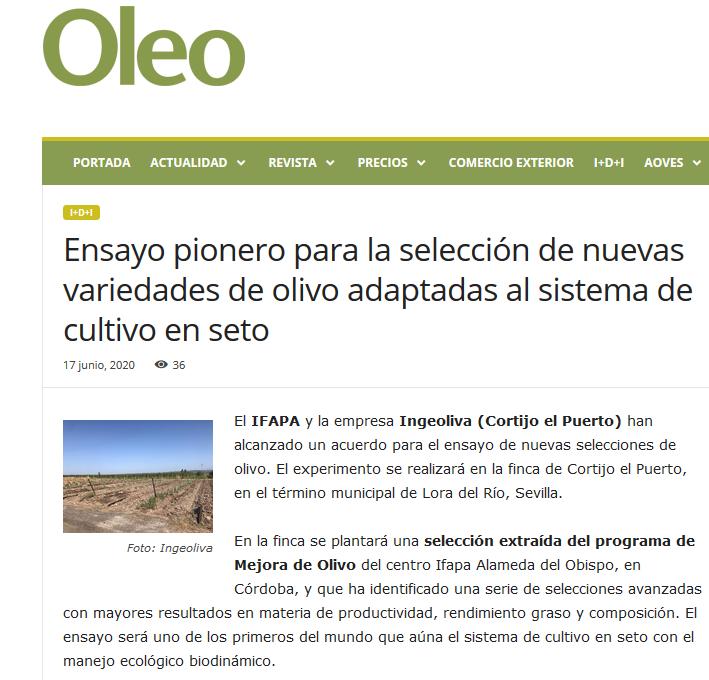 Oleo revista_IFAPA _convenio Cortijo el Puerto ecológía e innovación_nuevas variedades olivo_17 junio