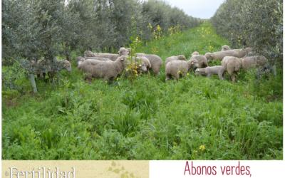 Abonos verdes: entrevista a Cortijo el Puerto en «La Fertilidad de la Tierra»
