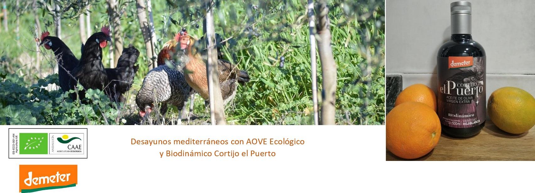 AOVE ecologico biodinamico Cortijo el Puerto Organic Farm3