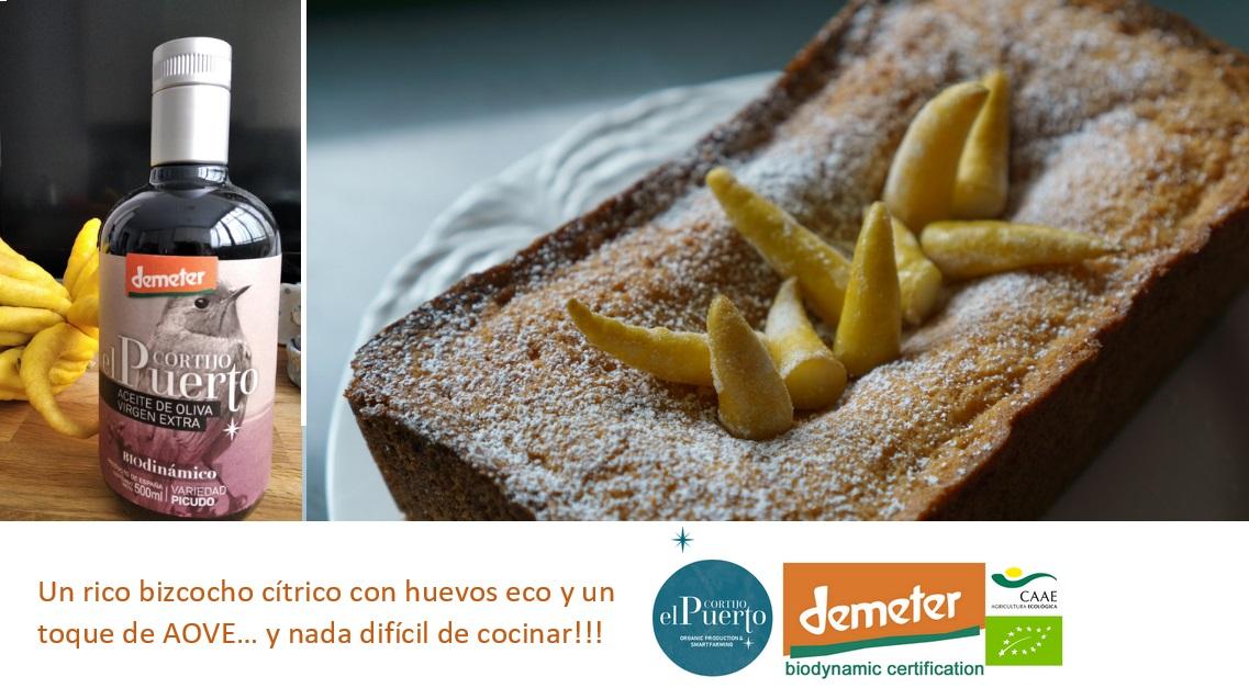 AOVE ecologico biodinamico Cortijo el Puerto Picudo Organic Farm citric cake organic breakfast