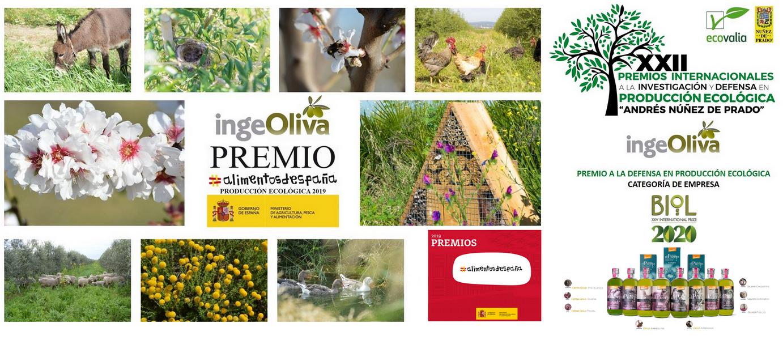aceite de oliva ecologico biodinámico cortijo el Puerto AOVE ecosistema feliz 2021
