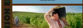 Paisajes agrícolas en las comarcas hispalenses: Écija y la Vega del Guadalquivir: La agricultura y los agricultores. La pasión del trabajo en los albores de la naturaleza