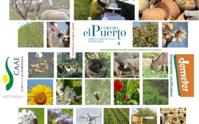 Regenerando suelos y ecosistemas: Ecología y Biodinámica en Cortijo el Puerto