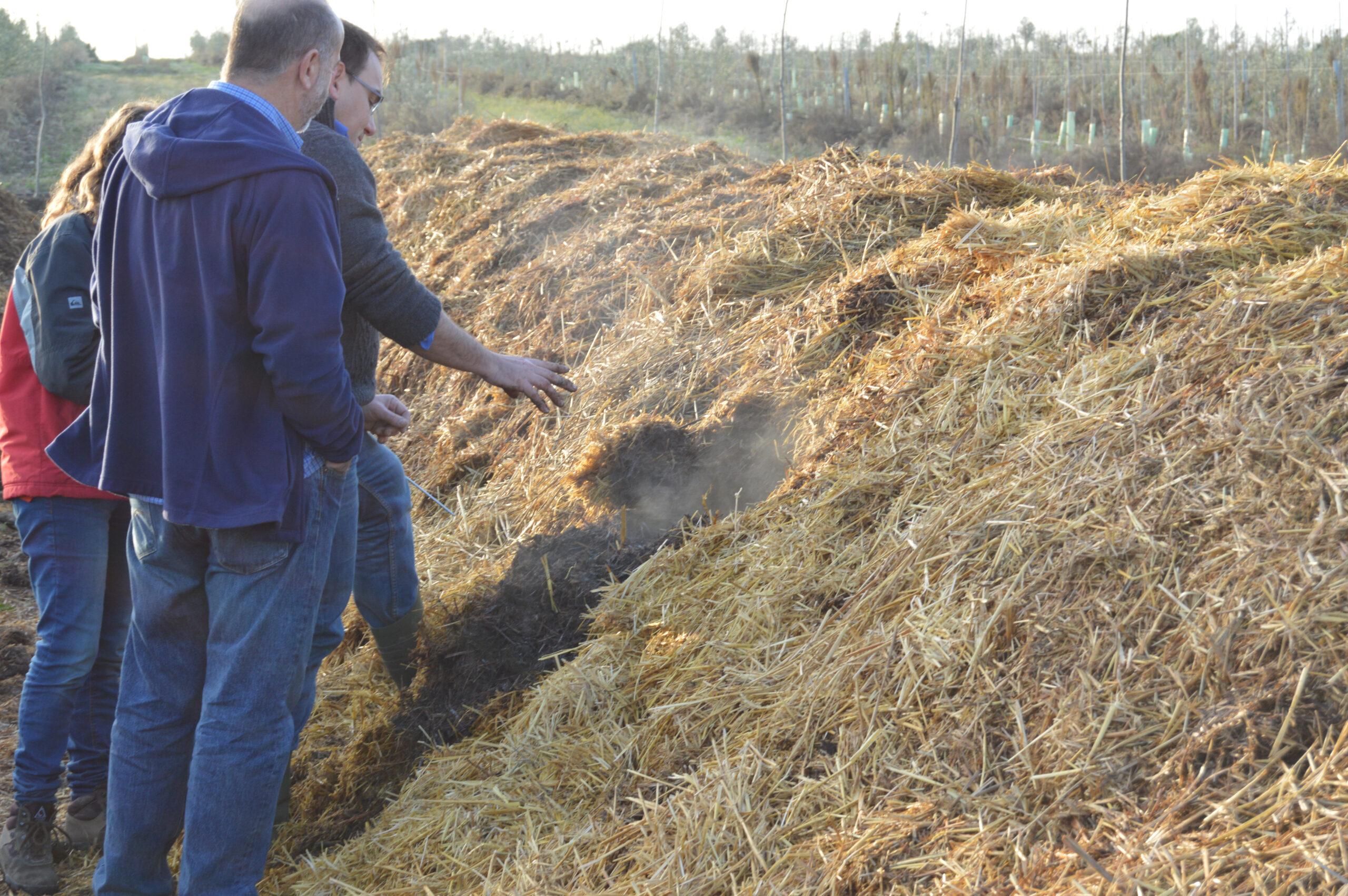 Elaboración compost biodinamico Cortijo el Puerto