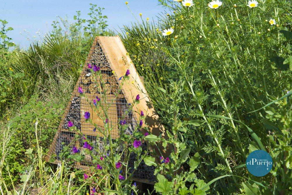 abejas ecologico Cortijo el puerto biodiversidad polinizadores